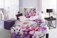 961-lilac-passion-25-flieder-farbeingestellt-crop-u26421