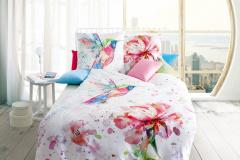 962-hummingbird-18-pink-farbeingestellt-crop-u26449